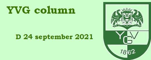 Logo column D24